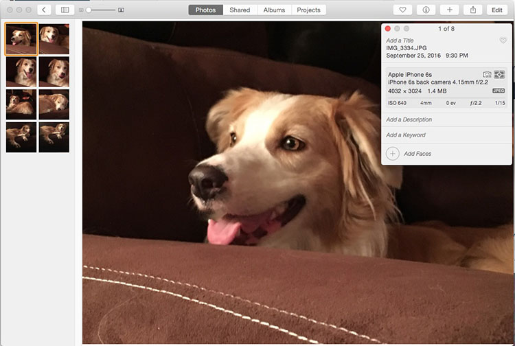 title-and-tag-photos-in-iphoto