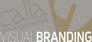 visual-branding-visual-design-Alvalyn-Lundgren-Alvalyn-Creative