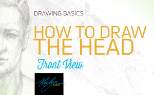 How To Draw The Head Front View by Alvalyn Lundgren