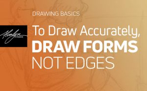 Drawing Basics: To Draw Accurately, Draw Forms Not Edges by Alvalyn Lundgren