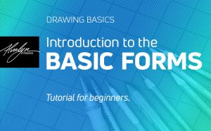 Introduction to the basic forms in drawing for beginners by Alvalyn Lundgren